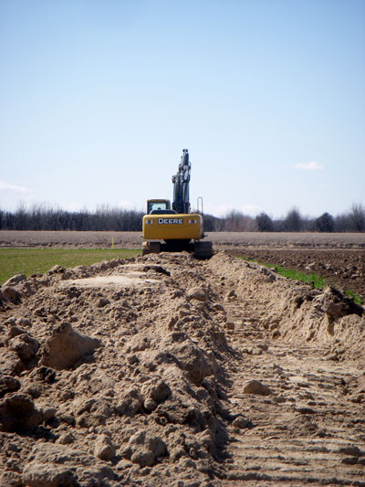Image of ...Excavation of Pecan Orchard
