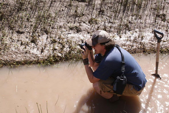 Image of ...James Hill Photographing Equisetum (Photo by 2009 Weed Science Field Crew)